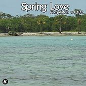 SPRING LOVE COMPILATION VOL 102 de Tina Jackson