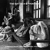 Chronicles of a Schizophrenic: Volume 02 by The SAI-Tech Experiment