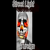 Streetlight by Tureign