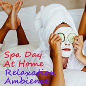 Spa Day At Home Relaxation Ambience by Various Artists