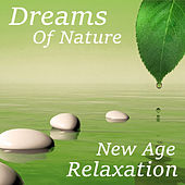 Dreams Of Nature New Age Relaxation by Various Artists
