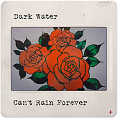 Can't Rain Forever by Darkwater