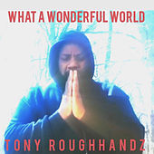 What a Wonderful World by Tony Roughhandz