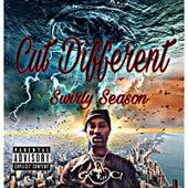 Cut Different by Swirly Season