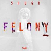 Felony de Shuga (1)