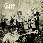 So Clear by Sweet Vandals