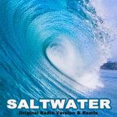 Saltwater (Original Radio Version & Remix) by Moya Caine