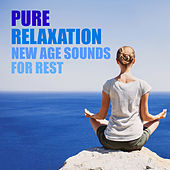 Pure Calm New Age Sounds For Rest by Various Artists