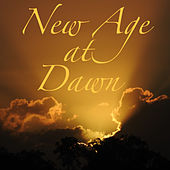 New Age at Dawn by Various Artists