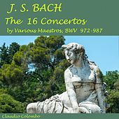 J.S. Bach: The 16 Concertos By Various Maestros, BWV 972-987 by Claudio Colombo