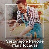 Sertanejo e Pagode Mais Tocadas de Various Artists