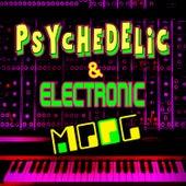 Psychedelic & Electronic Moog de Emil Richards