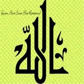 Quran, Short Surahs (Best Recitations) van Various Artists