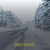Deep Freeze de Willie Nelson, Billy Joe Royal, Don Gibson, Tex Ritter, Charlie Rich, Carl Smith, Boxcar Willie, Ferlin Husky