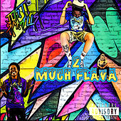 2 Much Flava by Just Smalls