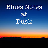 Blues Notes at Dusk von Various Artists