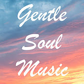 Gentle Soul Music by Various Artists