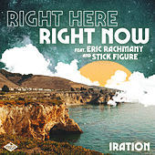 Right Here Right Now by Iration
