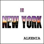 In New York de Neelix