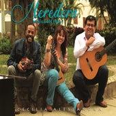 Heredera Musica del Perú! de Cecilia Alessandra