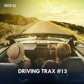 Driving Trax, Vol. 13 de Hot Q