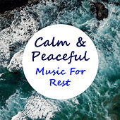Calm & Peaceful Music For Rest by Various Artists