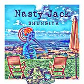 Shungite by Nasty Jack