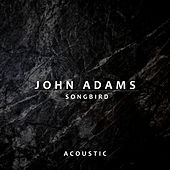 Songbird (Acoustic) by John Adams