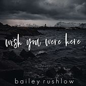 Wish You Were Here by Bailey Rushlow