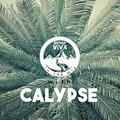 Natura Viva in the Mix with Calypse de Various Artists