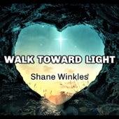 Walk Toward Light by Shane Winkles