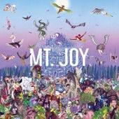 Death fra Mt. Joy