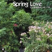 SPRING LOVE COMPILATION VOL 116 de Tina Jackson