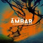 Âmbar - Os Afluentes da Música de Edson Natale