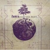 Electronic Heart by Zebra