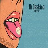 Mi Destino (Remix) by Kidd Flexy