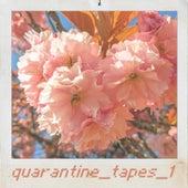 Quaratine_tapes_1 de Guy
