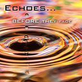Echoes…Before They Fade by Matt Johnson