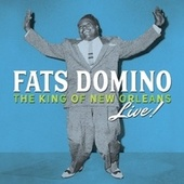 I'm in the Mood for Love (Live) de Fats Domino