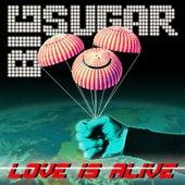 Love Is Alive by Big Sugar