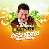 Despierta Corazón von Dilbert Aguilar y su Orquesta La Tribu