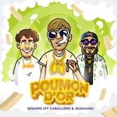 Poumon d'or de Senamo