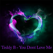 You Dont Love Me by Teddy B!