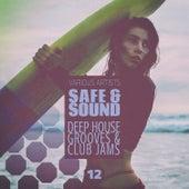Safe & Sound, Vol. 12 von Various Artists