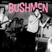 You Really Got Me by The Bushmen