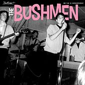 Hitch Hike de The Bushmen