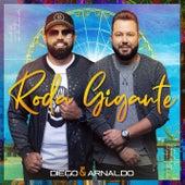 Roda Gigante de Diego & Arnaldo