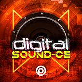 Digital Sound-CE de Various Artists