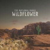 Wildflower von The National Parks