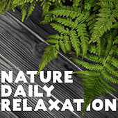 Nature Daily Relaxation – Stress Relief, Calm Down, New Age Music, Tranquil Sounds de Relaxing Music (1)
